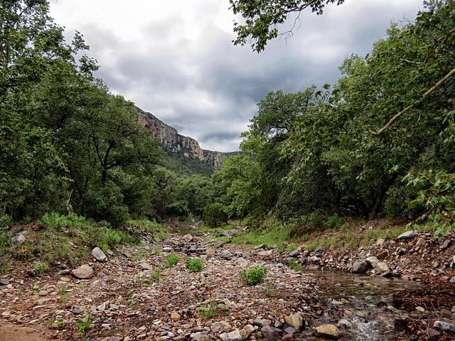 Carr Canyon