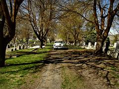 1950 Chevrolet at Linkville Cemetery