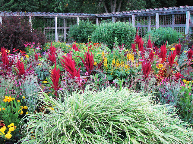 Idea Garden at Cantigny