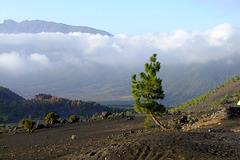 View to Caldera de Taburiente