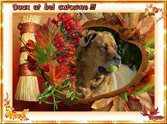 DANA: doux et bel automne ! [ON EXPLORE]