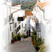 Calle Zacatin, Frigiliana, Malga. Spain