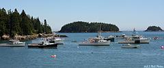 A Few Lobster Boats in Cutler Harbor