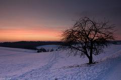 Nach Sonnenuntergang - After Sundown (240°)