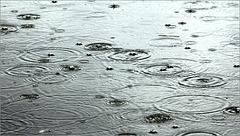 Toute la pluie tombe .....
