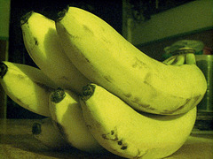 A Loverly Bunch Of Bananas