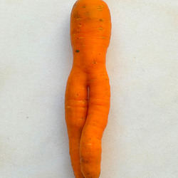Vénus de Milo version carotte ?