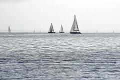 Segler auf dem See