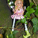 Wee Fairy up a Tree