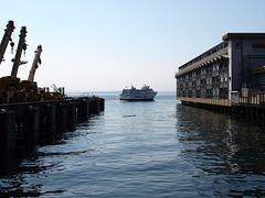 Seattle, WA (p8146487)