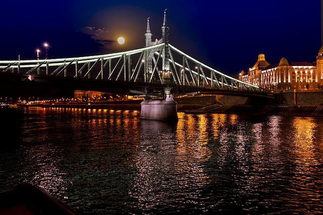Liberty Bridge on the Danube