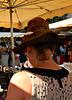 la plume dans .... le ... chapeau