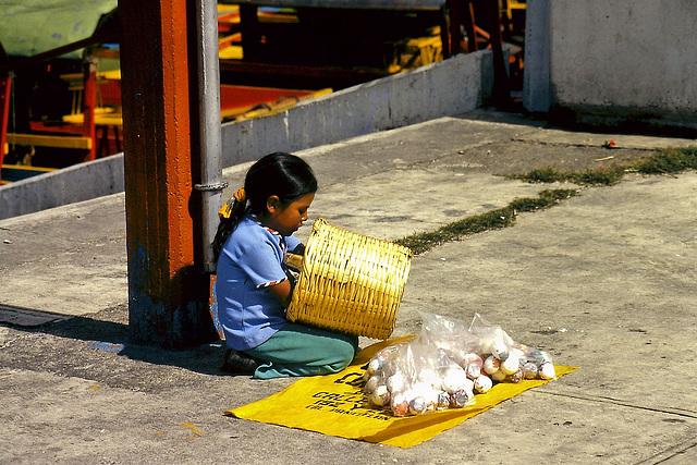 Mexique (MEX) Juillet 1979. (Diapositive numérisée).