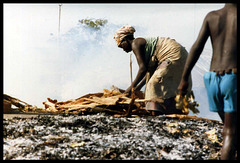 Senegal, 1986