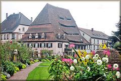 """Wissembourg (67) 5 septembre 2014. """"La Maison du Sel""""."""