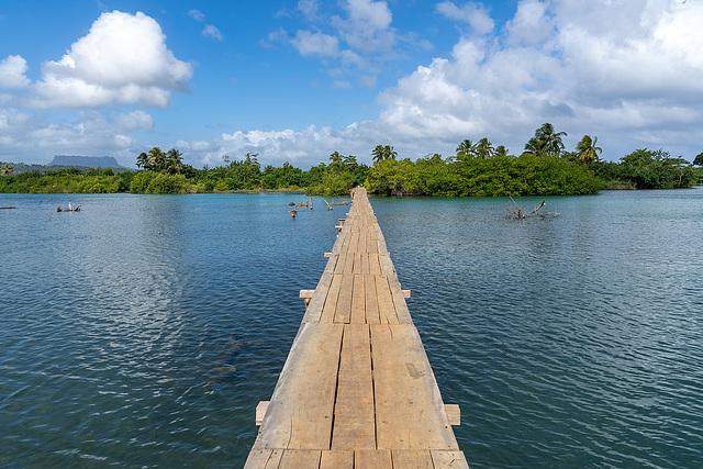 crossing Río Miel