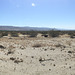 Marijuana Cultivation Groundbreaking Panorama