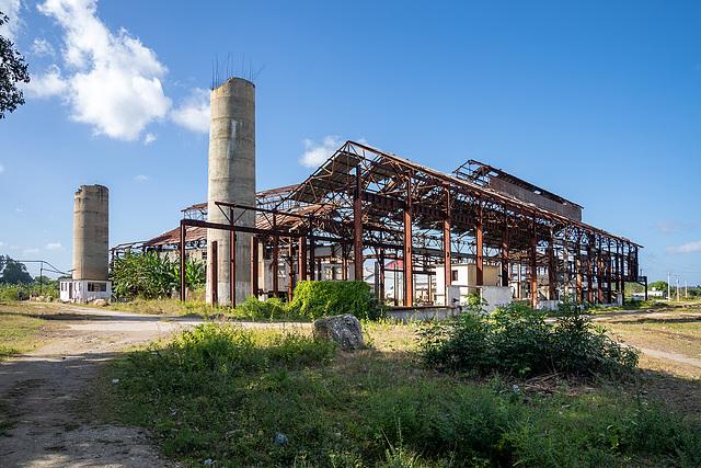 """sugar mill """"Noel Fernández"""" - Senado - 5"""