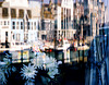 Weymouth Harbour (Reflected)