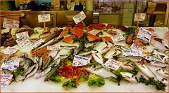 Genova :  Banco del pesce al Mercato Orientale - (927)