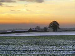 Winter dusk over a farm in the Vale of Pickering
