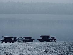 Dark day at the lake.