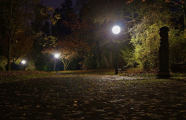 Eine Herbstnacht im Park - An autumn night in the park
