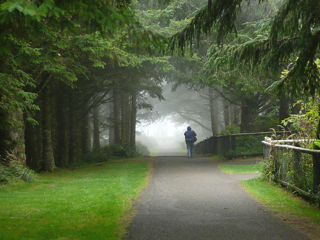 Oregon Fog