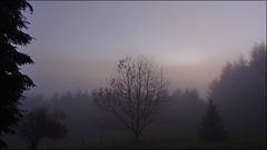 Ce soir à la brume... [ ON EXPLORE ]