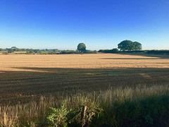 Early morning in Gnosall