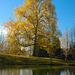 il lago e l'autunno