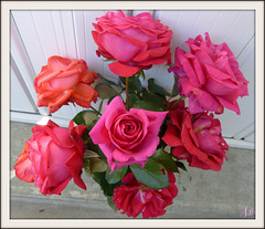 ** Pour vous ces jolies roses avec toute mon amitié **