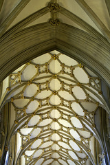 Ceiling Vaults of Wells Cathedral 1 (PiP)