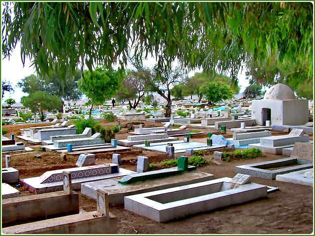 Hammamet : il cimitero musulmano della città sulla fortezza con vista mare, curato e ordinato.