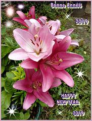 Bonne Année 2019 , Bloavez Mat, feliz año nuevo, happy new year, ein gutes neues Jahr, kali chronia,felice anno nuovo,