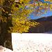 l'autunno travestito da inverno