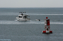 Cruising Past the EB Buoy