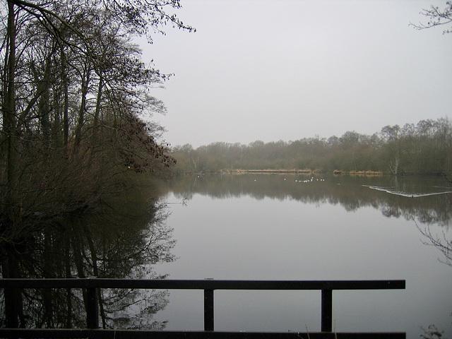 Fradley Pool Nature Reserve