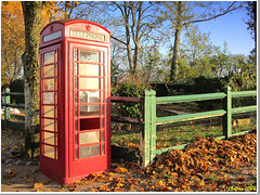 New life for a phone booth