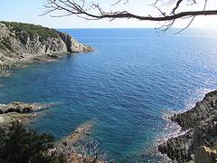Ile de Port-Cros 3