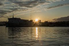 abends am Hafen von Malaga (© Buelipix)