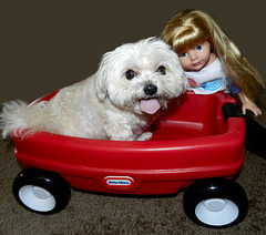 Bella And Alex In Their Little Red Wagon