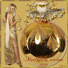 Joyeux Nouvel an 2019 à tous...