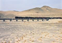 Bridging the desert