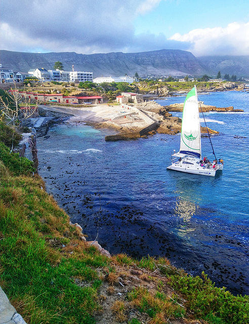 Hermanus Old Harbour, new yacht