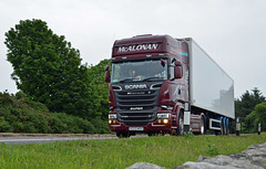 Scania R520 on A75 near Gatehouse-Of-Fleet