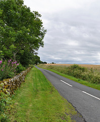 Scotland St. Cuthbert's Way