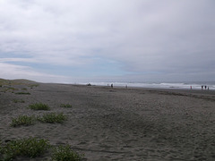 Verdure de plage