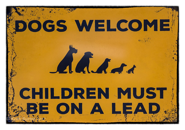 Dogs Welcome........