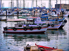 il porto di Salvador de Bahìa (339)